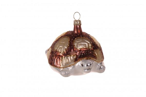 Schildkröte, braun