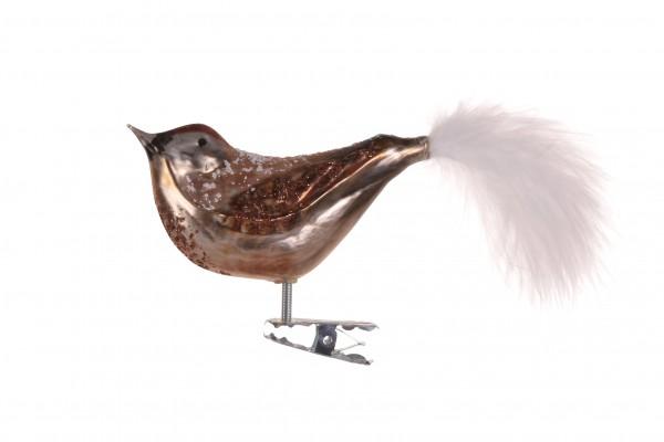 Vogel, braun