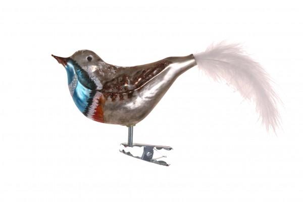 Vogel, braun-blau