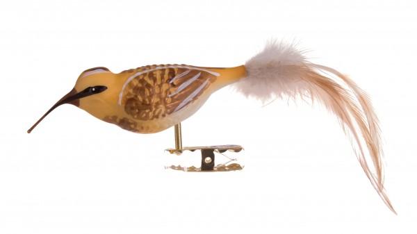 Paradisvogel, gelb-braun