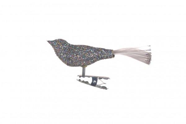 Vogel, klein, Silberglimmer