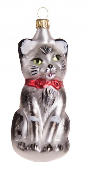 Katze, grau